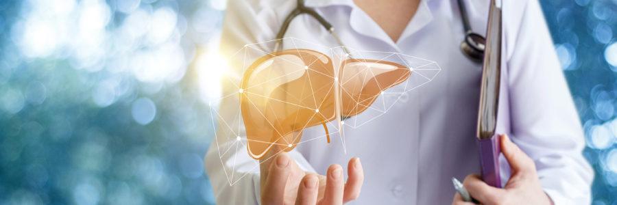 O que é Doença do Fígado - Hepic